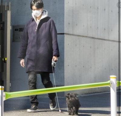長谷川博己 犬の散歩